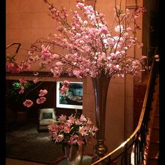 Magnificent #cherryblossoms filling the lobby #thepeninsulanyc #rennyandreed