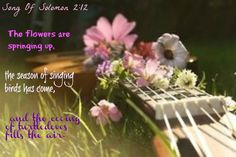 Song Of Solomon 2:12 The flowers are springing up,   the season of singing birds has come,   and the cooing of turtledoves fills the air.