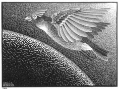 The 1st Day of the Creation - M.C. Escher, 1925