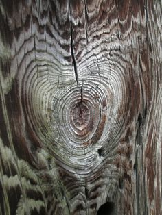 Natural Wood Heart