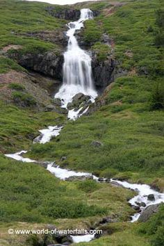 The waterfall in Tungudalur has an attractive cascade flanked by large fields of purple wildflowers and bush. Purple Wildflowers, Wild Flowers, Iceland Waterfalls, Dreaming Of You, Hawaii, Exotic, Ocean, Island, World