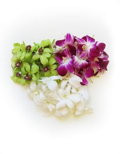 Dendrobium orchids are durable and long lasting lei making flowers, and their vibrant colors make beautiful leis!