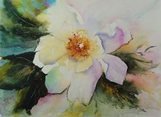 Rose by Louise Bougourd from the Synthesis exhibition of watercolour paintings by Louise Bougourd at Harbour House, October 2015 www.harbourhouse.org.uk #watercolour