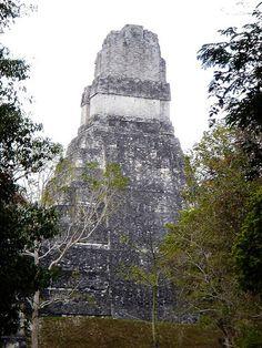Mayan city of Tikal . Guatemala
