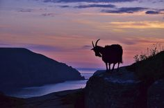 Exmoor National Park   17 British Landscapes That Are So Beautiful You'll Want To Cry