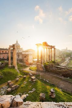 The Roman Forum was the center for public Roman life, during Imperial Rome: elections, public speeches, criminal trials, and even gladiatorial matches took place here in the Roman Forum. Places Around The World, Oh The Places You'll Go, Travel Around The World, Places To Travel, Places To Visit, Dream Vacations, Vacation Spots, Wonderful Places, Beautiful Places