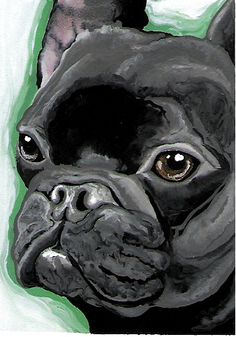 ACEO Black French Bulldog Dog Art Print-Carla Smale