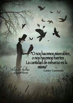 """Carlos Castaneda. """"O nos hacemos miserables, o nos hacemos fuertes. La cantidad de esfuerzo es la…"""