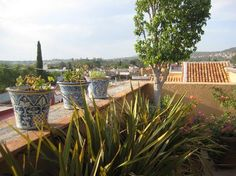 pictures of roof terraces in mexico   Pictures of Casa Calderoni Bed and Breakfast, San Miguel de Allende ...