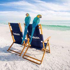 Grab a friend and plan you beach getaway this summer!