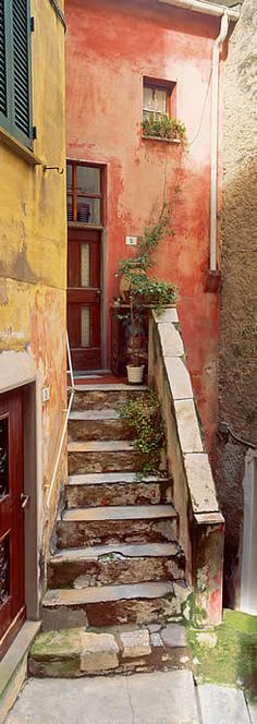 This doorway is in Tellaro, Italy