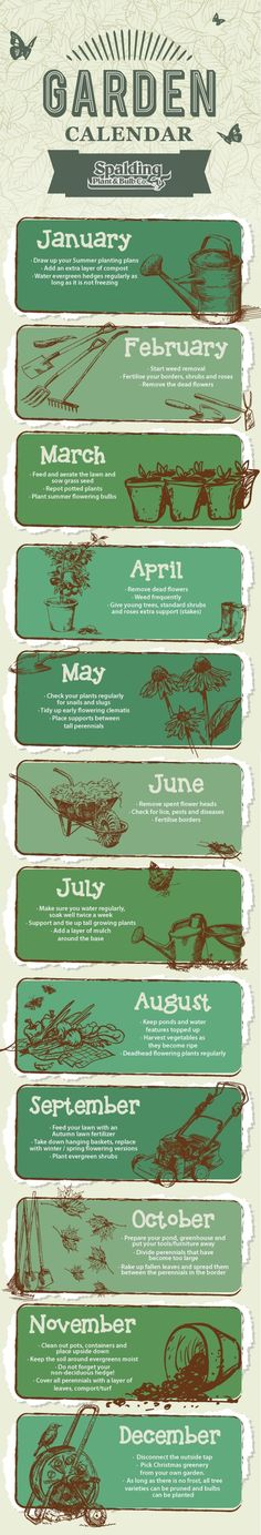 Spalding Gardening Calendar - Month by Month! by bleu.