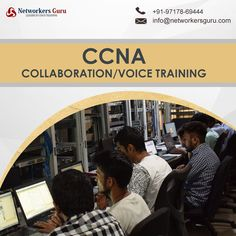 Networkers Guru is the house of Cisco Training that offers outstanding CCNA Collaboration/Voice course training. Routing And Switching, Collaboration, The Voice, Training, House, Haus, Education, Houses, Home