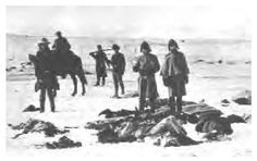 Dead Indians are frozen in the ice the morning after the Battle of Wounded Knee, 1890. The Wounded Knee massacre remains very much in the hearts and minds of Lakotas, with many annual remembrance ceremonies and pilgrimages to the site. The Wounded Knee massacre marked the symbolic end of large-scale Native American armed resistance in the United States.: