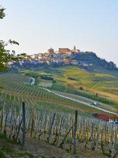 Monforte d'Alba, Piemonte, Italy
