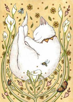 https://s-media-cache-ak0.pinimg.com/736x/72/11/f5/7211f54b912120b6210993ed0413ceb2--white-cats-anita.jpg