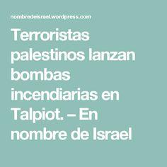 Terroristas palestinos lanzan bombas incendiarias en Talpiot. – En nombre de Israel