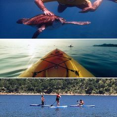 Llegan las vacaciones! Entra en nuestra web y aventúrate a realizar actividades nuevas este verano!! #veranoiscoming #regala #regalar #regalazo #rutas #ocio #verano #madrid #vacaciones #quehacer #compartir #comparte #compartiendo #experience #experiencia #experiencias #experienciasunicas #kayaking #kayak #tortugas #paddlesurf #tenerife #queregalar #regalaexperiencias