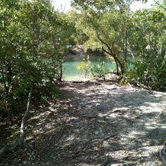 Oleta River State Park (Miami)