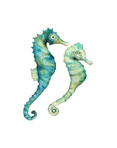 Sea horses - colour is perfect but with some yellow or highlighter green