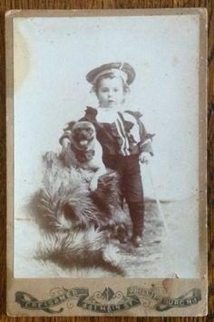 Vintage Cabinet Photo Pug Dog Little Sailor Boy Phillipsburg NJ | eBay