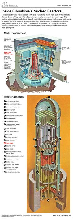 Here's a look under the hood of a nuclear reactor, and what can go wrong. Nuclear Engineering, Nuclear Physics, Mechanical Engineering, Fukushima, Nuclear Energy, Nuclear Power, Japan Nuclear, Reactor Nuclear, Fallout