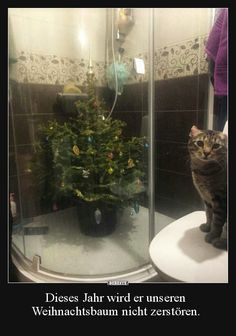 Xmas Tree Madness: How People Are Hilariously Avoiding The Chaos - World's largest collection of cat memes and other animals Cute Cats, Funny Cats, Funny Animals, Cute Animals, Christmas Jokes, Christmas Cats, Dog Fails, Cat Attack, Memes Of The Day
