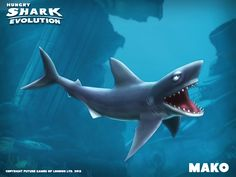 Mako Shark - Hungry Shark Evolution