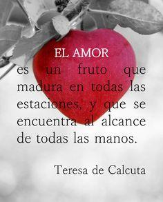 """""""EL AMOR"""" es un fruto que madura en todas las estaciones, y que se encuentra al alcance de todas las manos. Teresa de Calcuta #sientetualma #sabiduriaparaelalma #frases #amor #teresadecalcuta"""