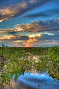 Sunset over the River of Grass (the Florida Everglades)