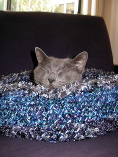 How cute!! I need to go to the store for more yarn!