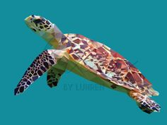 The Hawksbill Turtle is classified as critically endangered. Approximately 15,000 to 20,000 animals are left in the world. Hawksbills are harmed through nets and fishing hooks that make them unable to reach the surface to get the air they need, and so they end up drowning. This problem only increases with increased fishing activity.  I decided to create pieces of endangered species to raise awareness and try to get people to donate money to help protect these innocent animals. 10% will be…