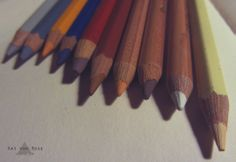 • Kat Von Rose • KvR • Sketch • Drawing • Pencil • Illustration • Art • Animals