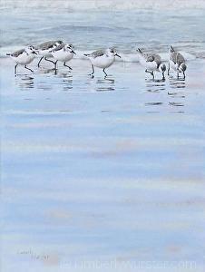 Harmony (Sanderlings in winter plumage) by Kimberly Wurster Pastel ~ 22 x 18