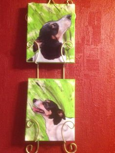 I loved doing these portraits of my babies.  I pinned the original that gave me the idea and tutorial that was spot on.  Thanks, Christine.