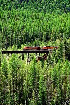 BNSF Train in Oregon. wish NS had views like this