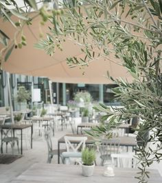 Restaurant Bar, Places To Go, Table Decorations, Furniture, Home Decor, Mediterranean Kitchen, Glass House, Environment