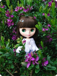 Maribel (Simply Chocolate) Playing with flowers