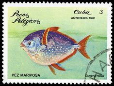 Opah fish postage stamp