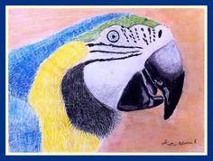 Cursos de Pintura y Música en Chihuahua | Pinturas 2015