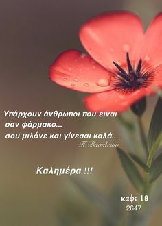 Good Morning Messages Friends, Good Morning Wishes, Night Pictures, Greek Quotes, Plants, Anna, Wallpapers, Decor, Pictures