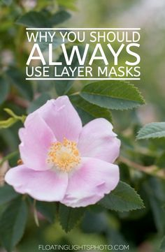 Why You Should ALWAYS Use Layer Masks | Photography Tips for Photoshop | Focus…