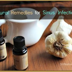Natural Remedies For Sinus Infection In Dogs