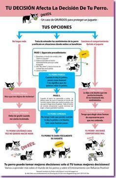 tu decision afecta a tu perro