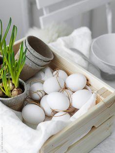 Här har vi dukat till en stämningsfull påskfrukost helt i vitt - för den som tröttnat på pynt, färgglada ägg, kycklingar och påskris med kulörta fjädrar. Äggskalsvitt är också en färg och så god som någon att försätta oss i påskstämning med spirande vårkänsla.