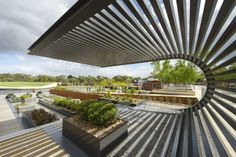 The Australian Garden / Taylor Cullity Lethlean + Greg Burgess Architects + Kirsten Thompson Architects / Australia