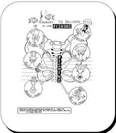 Differences between caput succedaneum, cephalhematoma, and