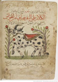 Miniature Animal by é'い - 中æ' on Pinterest   16th Century, 17th ...