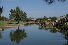 Ocotillo, Chandler AZ just one view