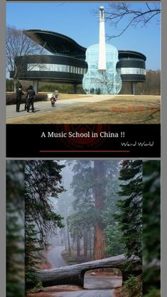 Music School, Weird World, Statue Of Liberty, Travel, Weird, World, Statue Of Liberty Facts, Viajes, Statue Of Libery